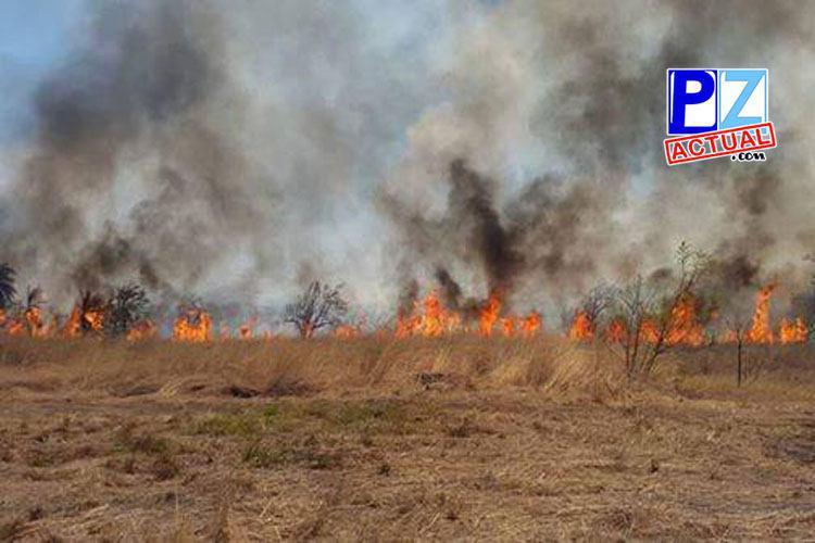 CNE declara alerta verde ante incendios forestales en Pérez Zeledón y otras zonas del país.