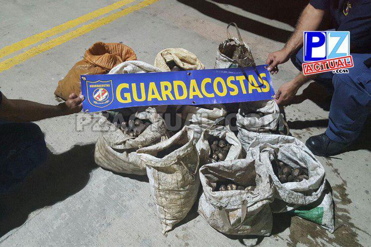 Servicio Nacional de Guardacostas detuvo en Golfito lancha y decomisó fuerte carga de moluscos.