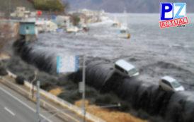 Comité Municipal de Emergencia del cantón de Osa impartirá taller sobre prevención de tsunamis en Bahía Ballena.