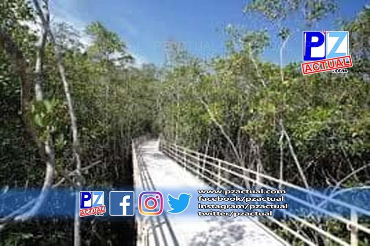 Sinac, www.pzactual.com